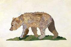 Jason LaFerrera Grizzly Bear