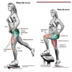 Insightful turned glute building exercise at home go to these guys Butt Workout, Workout Fitness, Yoga Fitness, Gym Workouts, At Home Workouts, Fitness Tips, Health Fitness, At Home Workout Plan, Workout Trainer
