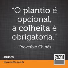 """""""O plantio é opcional, a colheita é obrigatória."""" (Provérbio Chinês)  Martha Gabriel. Frases. Frase. @Martha Gabriel"""