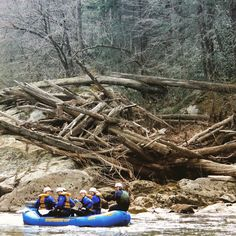 Flood waters put logs in some interesting places on the Chattooga river.