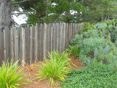Fence, Wood  Gates and Fencing  Landscaping Network  Calimesa, CA