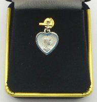 Solid Gold Catholic Medals available in 9 karat gold and 18 karat gold, all medals come suitably boxed in stylish jewelry presentation boxes. Solid Gold, White Gold, Catholic Medals, Our Lady Of Lourdes, Stylish Jewelry, Heart Of Gold, Virgin Mary, Pendants, Hang Tags