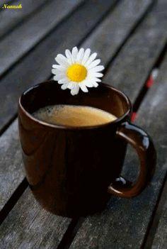 8 Adventurous Cool Tricks: Morning Coffee Latte coffee and books stars.Coffee And Books Stars. Coffee And Books, Coffee Love, Coffee Break, Iced Coffee, Morning Coffee, Good Morning, Coffee Menu, Coffee Poster, White Coffee