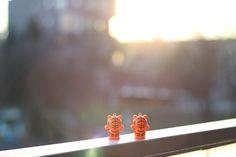 Tygrysy w porannym słońcu by Maciek Orczykowski on tookapic