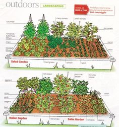 Garden Planning How To Lay Out A Garden Gorgeous Small Garden Layout 17 Best Ideas About Vegetable Garden Vegetable Garden Planner, Small Vegetable Gardens, Vegetable Garden Design, Veg Garden, Garden Types, Small Gardens, Outdoor Gardens, Vegtable Garden Layout, Vegetable Gardening