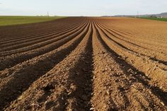 2013-04-21: agriculture