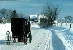 Amish Buggy in the Snow in Ohio