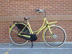 The Bee-kissed, bike