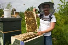 Overland Apiaries