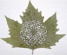 Intricate Hand Cut Leaf Art by Spanish Artist Lorenzo Duran Spanish Artists, All Nature, Wow Art, Leaf Art, Leaf Design, Amazing Art, Awesome, Street Art, Sculptures