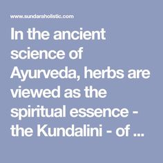 In the ancient science of Ayurveda, herbs are viewed as the spiritual essence - the Kundalini - of plants. Plants and herbs carry in their cells the wisdom of cosmic intelligence, and the healing vibrations of nature. Since ancient times, humans and plants have had a very spiritual connection - plan