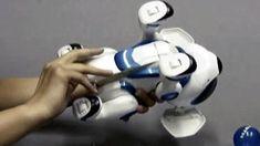 Teksta the Robotic Puppy Instructions (Hungarian)
