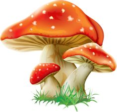 Illustration about Fairy happy baby fox on green grass with mushrooms and flowers. Illustration of kitty, drawing, plush - 44057601 Mushroom Paint, Mushroom Drawing, Mushroom House, Orange Mushroom, Mushroom Tattoos, Happy Baby, Fabric Painting, Fungi, Clipart