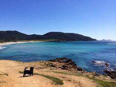 Prévoir vos vacances en Corse ! - Eat Clean Fit