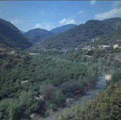 beirut's blog - Page 51 - LIBAN liban Liban libanon loubnan LEBANON lebanon Lebanon BEYROUTH SAIDA SIDON TYR TRIPOLI... - Skyrock.com