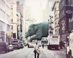 Escapee #collage #artwork #illustration #digitalart #digitalcollage