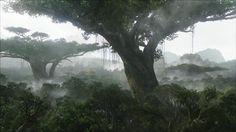 Ai văzut Avatar ? Dacă nu, atunci ți-l recomandăm pentru weekend. Ca de obicei, James Cameron a făcut o treabă excelentă, a creat o lume în care trunchiurile copacilor reprezintă adevărate orașe pentru populația indigenă. Filmul este totodată un semnal de alarmă pentru defrișările abuzive de păduri.