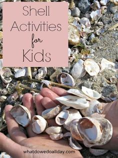 Ideas for simple shell activities to do with kids and bring the beach fun home!