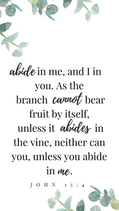John 15:4 Abide in Him