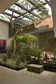 Home with atrium Indoor Courtyard, Internal Courtyard, Courtyard House, Design Exterior, Interior And Exterior, Inside Garden, Home And Garden, Casa Atrium, Interior Garden