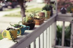 Coffee cup planters ♥ #garden #small #diy Nx