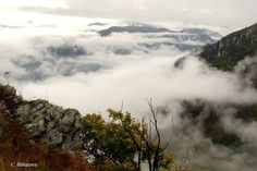 Romania - Carpathian Garden Editado · Parcul Național Domogled - Valea Cernei. Domogled-Cerna Valley National Park, Romania Photo: Marius Tudosie