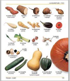 Les légumes 2 | Vegetables 2. Dico visuel français-anglais