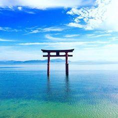 厳島神社…じゃないんです!海に浮かぶ鳥居が美しすぎる「白鬚神社」とは | RETRIP[リトリップ]