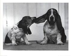 Lend Me Your Ear by Keystone