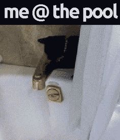 getting in the pool