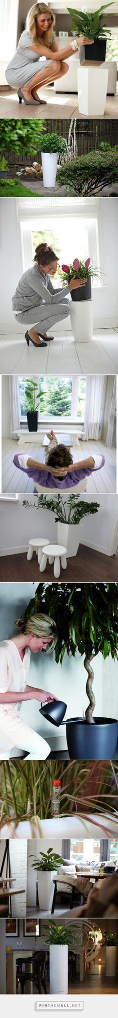 Modern flower pots with insert | Inspirowani Naturą