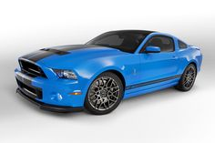 shelby mustang (4)