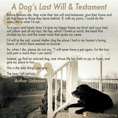 Dog Love lasts forever...This is beautiful and true.