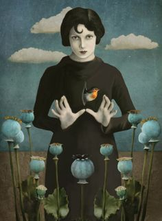 Poppies Lady - Surrealism Photograph Collage by Daria Petrilli Art Du Collage, Kunst Online, Art Et Illustration, Art Design, Surreal Art, Oeuvre D'art, Painting & Drawing, Illustrators, Fantasy Art