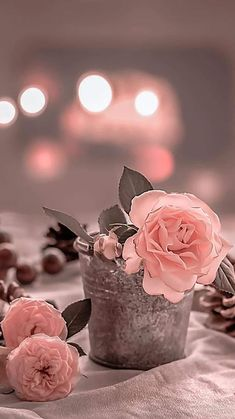Beautiful Flower Arrangements, Pretty In Pink, Beautiful Flowers, Fall Wallpaper, Iphone Wallpaper, Cute Images With Quotes, Pretty Photos, Flower Aesthetic, Everything Pink