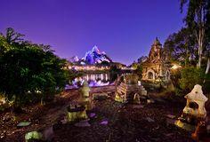 Top 10 Lenses for Disney Photography - Disney Tourist Blog