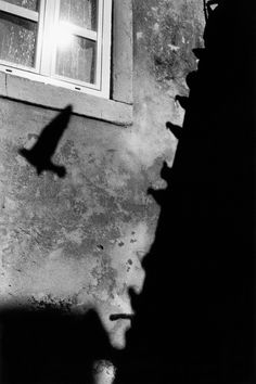JEAN-CHRISTOPHE BÉCHET Light In August, Jean Christophe, Visual Memory, Shadow Play, Gelatin Silver Print, French Photographers, Contemporary Landscape, West Africa, Light And Shadow