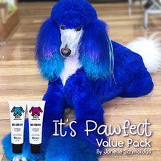 Dog Hair Dye, Dyed Hair, Dog Grooming Business, Pet Grooming, Poodle Cuts, Creative Grooming, Permanent Hair Dye, Pet Supplies, Hair Color