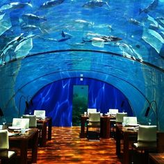 Dine under the sea at Ithaa Undersea Restaurant in the Maldives Islands
