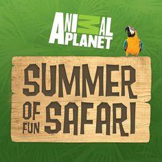 Win a VIP zoo or aquarium tour hosted by Animal Planet's Large Predator Expert Dave Salmoni! http://AnimalPlanet.com/SummerFunSweeps