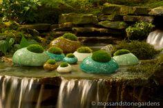 Moss Rocks!