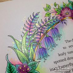 Ivy and the Inky Butterfly Coloring Book By Johanna Basford Coloring Book Art, Colouring Pages, Adult Coloring Pages, Johanna Basford Books, Johanna Basford Coloring Book, Lost Ocean, Joanna Basford, Enchanted Forest Coloring Book, Butterfly Coloring Page