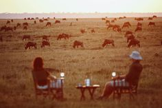 A Honeymoon Safari in Africa