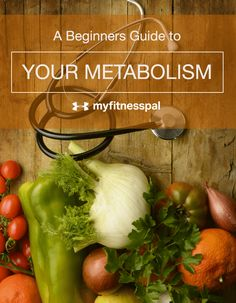A Beginners Guide to Your Metabolism