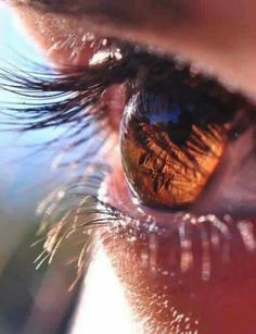 Shine of eyes