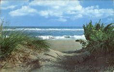 The Sand Dunes Of Jones Beach State Park Long Island New York