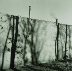 Zeď továrny, 1940 Jan Lukas