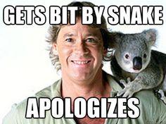 gets bit by snake apologizes - Good Guy Steve Irwin