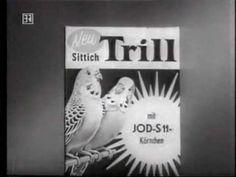 Jod S-11 Körnchen, irgendwie magisch... - wir hatten zwar keinen Vogel, aber unsere Nachbarin hatte einen Wellensittich