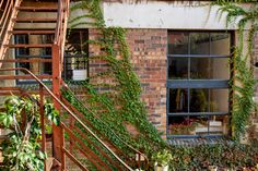 Green vines bringing life to an old building in Maboneng Old Gas Stations, Old Building, Vines, Outdoor Structures, Green, Photography, Home Decor, Photograph, Decoration Home